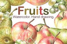 Watercolor fruits. Hand drawing.