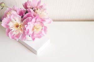Bouquet of peonies,  photo in gentle
