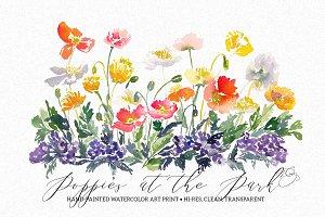 Vibrant Poppies Watercolor Art Print