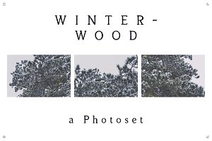 Winterwood [photoset]