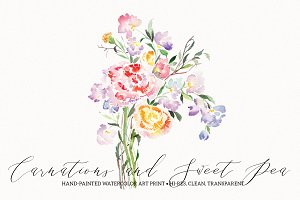 Carnations and Sweet Pea Watercolor
