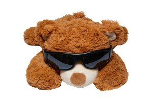 Brown toy bear in sunglasses