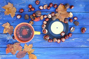 Autumn composition with chestnuts