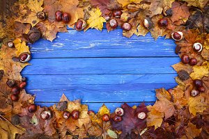 Autumn frame of leaves and chestnuts
