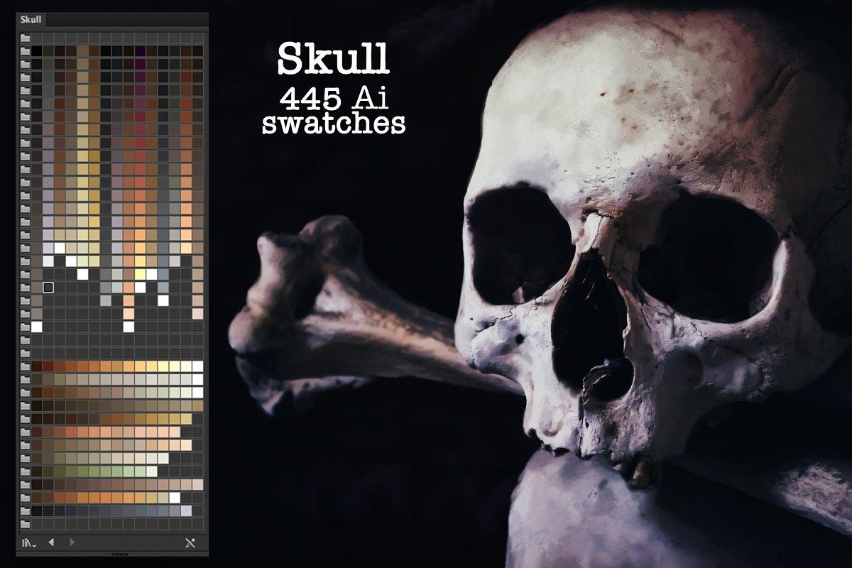 Skull Ai Swatches