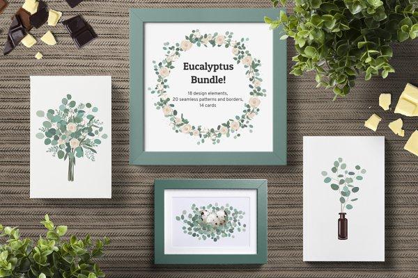 Eucalyptus Bundle