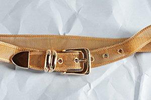 Gold Vintage Wire Belt