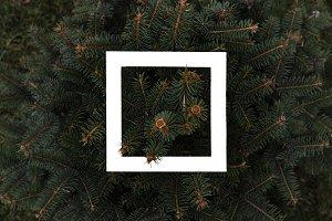 creative flat lay  white square fram