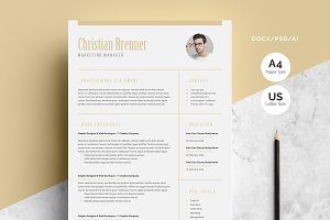 Clean Word Resume 3-Pages