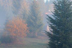 Autumn Carpathians, Ukraine.