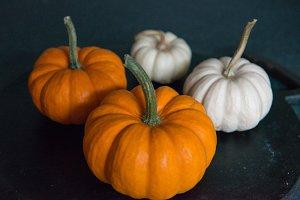 Photo of pumpkins, halloween