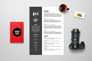 Grey - Resume template Word