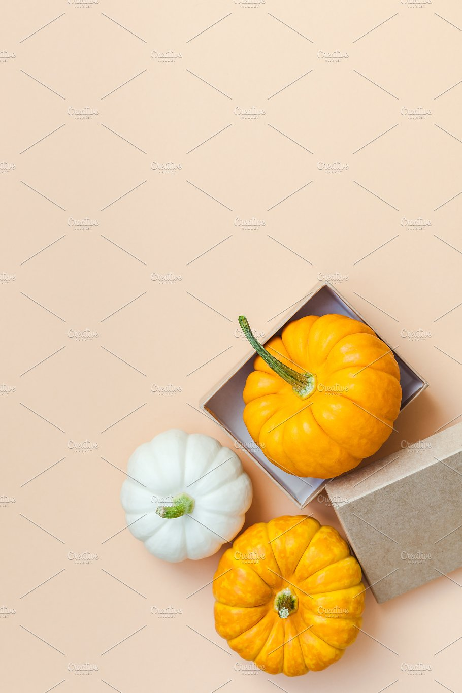 fall background with small pumpkins holiday photos creative market