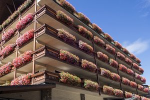 Flowered facade in a building
