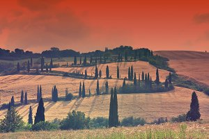 Spring day in the Tuscany rural land