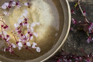 tibetan bown with flowers