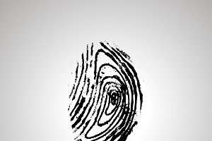 Detailed human fingerprint