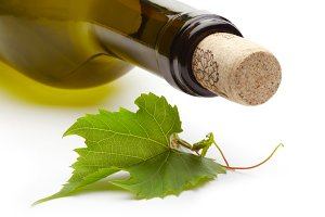 wine bottle and green grape vine