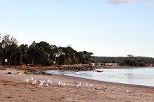 Batemans Bay, Australia