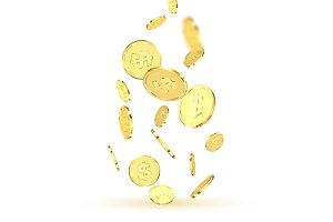 Golden coins.