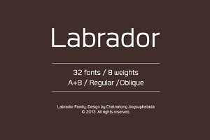 Labrador (Update v1.1)
