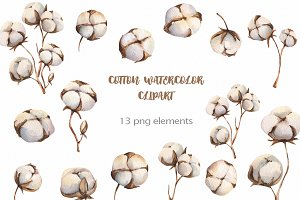 Watercolour Cotton clipart