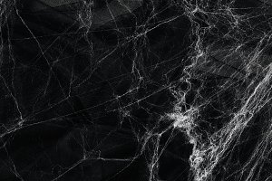 Spider web over black background.