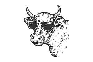 Cow animal in sunglasses vector
