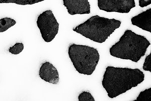 Snowy abstract black and white backg