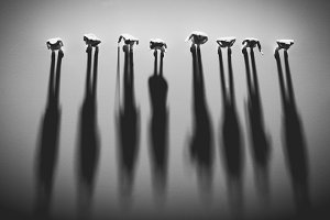 People figures standing in a row, ca