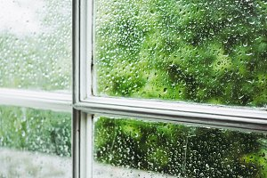 Wet window pane