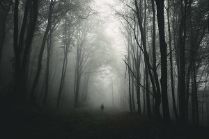 Man silhouette in scary forest