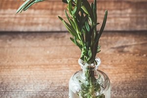 Fresh rosemary in vial