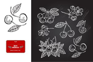 Hand Drawn Cherries