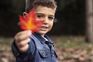 Cute boy shows a leaf in autumn