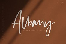 Albany | An Autumn Script by  in Script Fonts