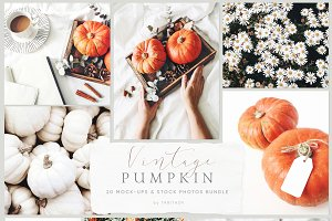 Vintage pumpkin mockups & photos