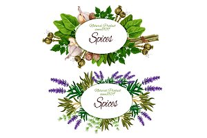 Vector spice, herbs and seasoning