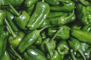 Fresh green padron hot chili peppers