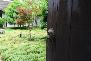 Traditional Door and Door Knob