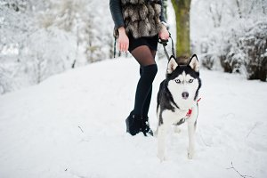 Husky dog on a leash at hand of girl
