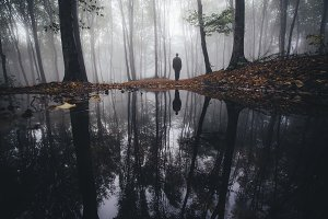 Lake reflection in dark forest