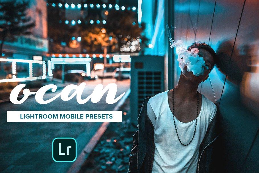 OCAN - Lightroom Mobile Presets ~ Other Design Software Add-Ons