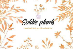 Goldie Plants Collection
