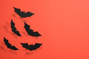Black Bats on Orange Background, Hal