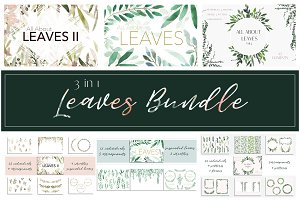 3 in 1 Bundle - All About Leaves