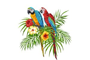 Illustration of macaw parrots.