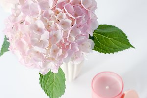 Pink Hydrangea and Candle