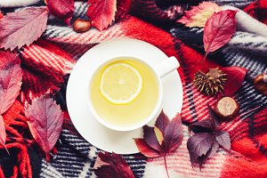 Cup of autumn tea