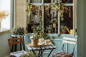 cozy summer café